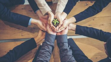 Top 4 des solutions écologiques pour les entreprises