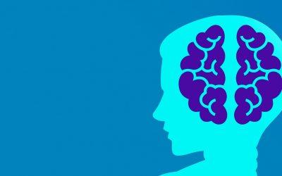 Qu'est-ce que la BI ? Meilleurs livres sur la Business Intelligence